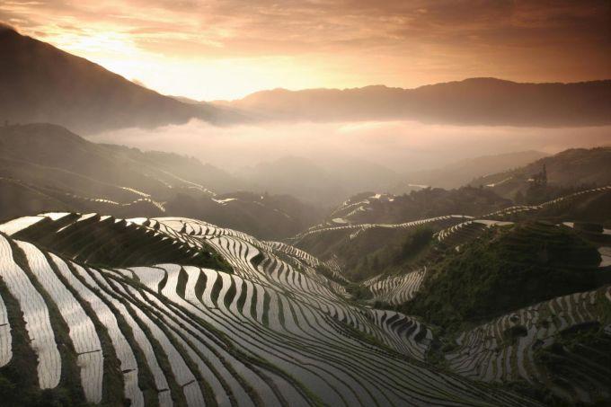 Terraced fields amidst mist: A beauty only in Vietnam