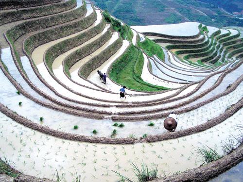 Workart of the Vietnamese ethnic minorities